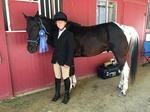 Brittany's Pony
